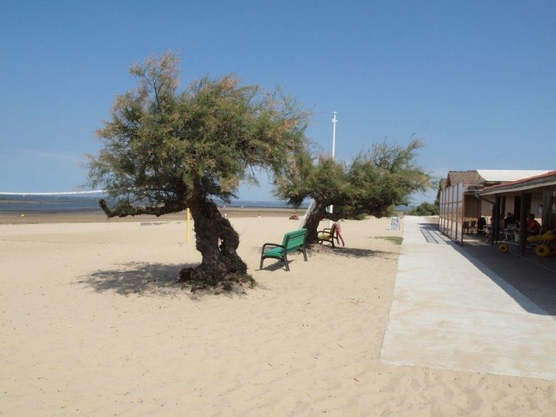 Plage Location Maison 110612 Arcachon