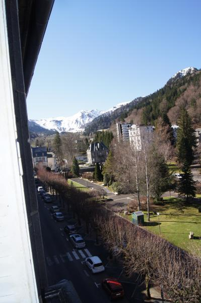 Vue depuis la location Location Appartement 77814 Le Mont Dore