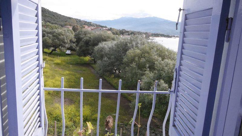 Vue depuis la location Location Studio 7879 Porto Pollo