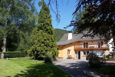 Location Gite 106919 Niederbronn les Bains