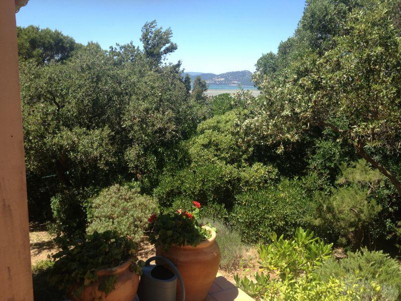 Jardin Location Villa 111454 Giens
