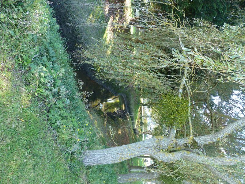 Vue autre Location Mobil-home 117426 Deauville