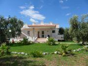 Appartement en Villa Gargano 3 à 4 personnes
