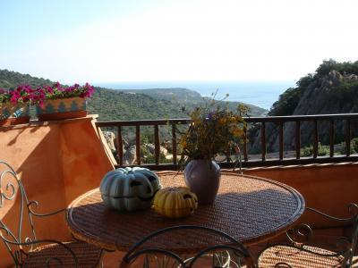 Vue de la terrasse Location Appartement 87298 Porto Cervo
