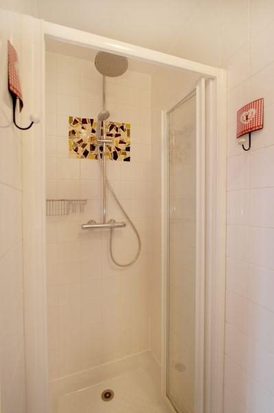 salle de bain 1 Location Chalet 91812 Les 2 Alpes