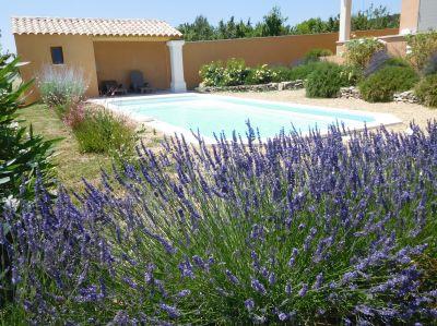 Piscine Location Villa 108228 Apt