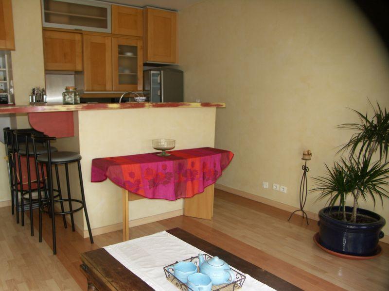 Cuisine américaine Location Appartement 110385 Le Grau du Roi
