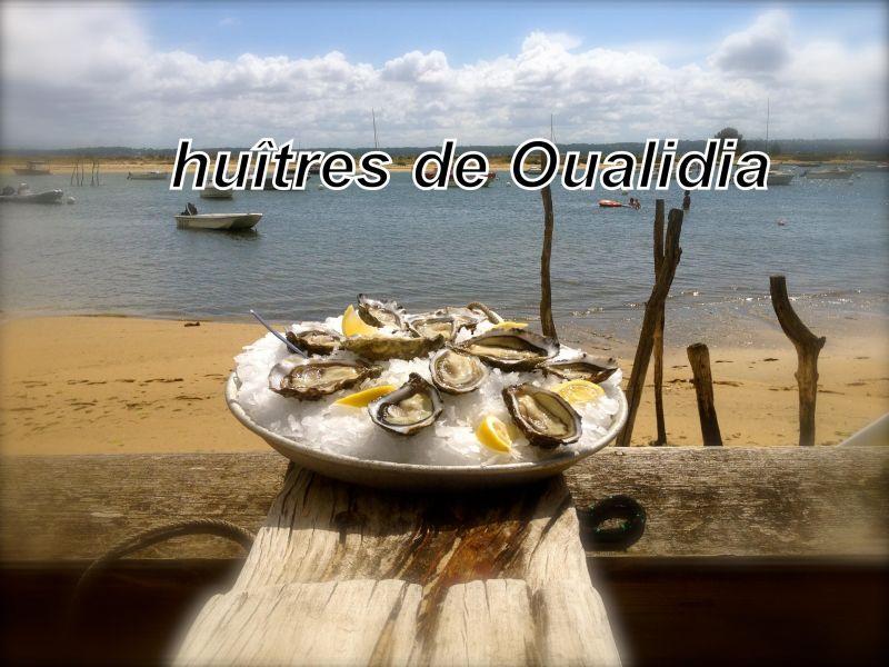Location Villa 115583 Oualidia