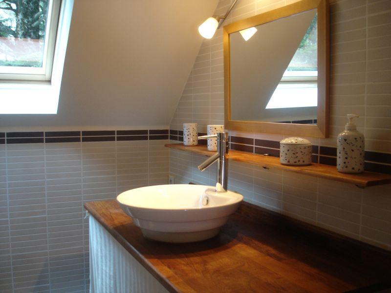 Salle d'eau Location Gite 67181 Saint Lary Soulan