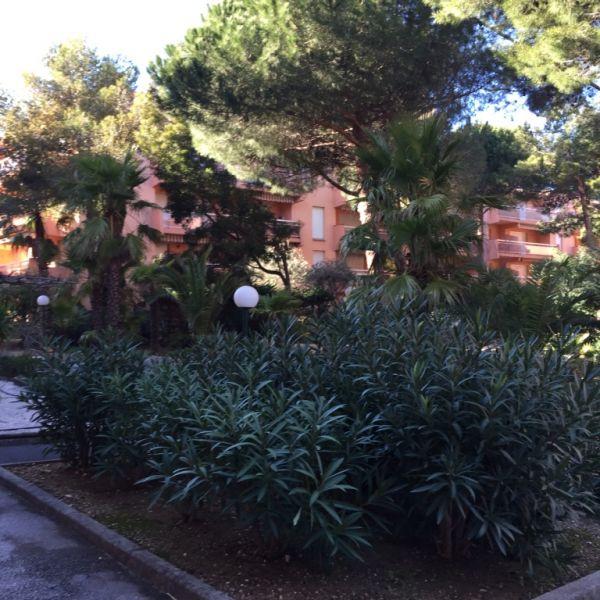 Jardin Location Appartement 94925 Bormes Les Mimosas