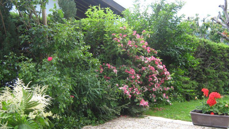 Jardin Location Appartement 97632 Notre Dame de Bellecombe
