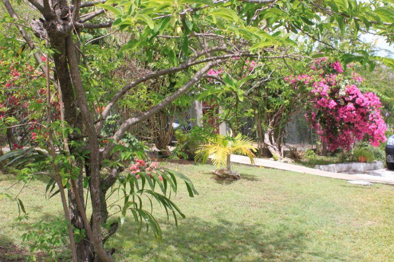 Jardin Location Studio 106679 Gosier (Guadeloupe)
