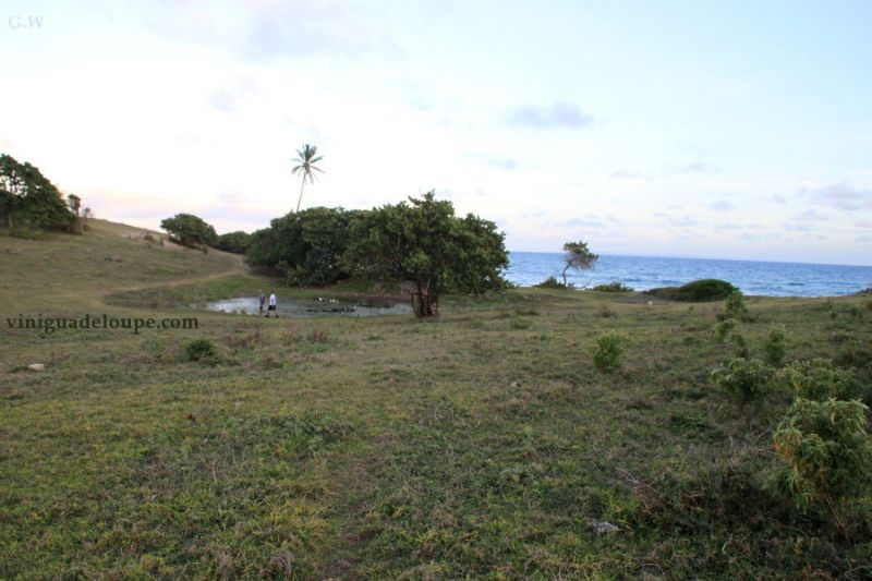 Location Studio 106679 Gosier (Guadeloupe)