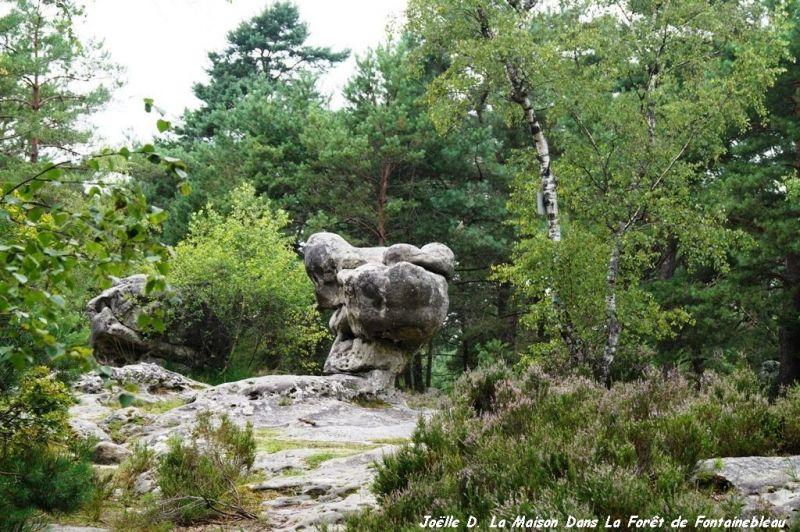 Vue autre Location Maison 117595 Fontainebleau