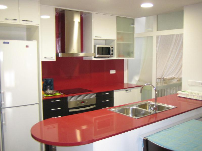 Cuisine américaine Location Appartement 66541 Barcelone