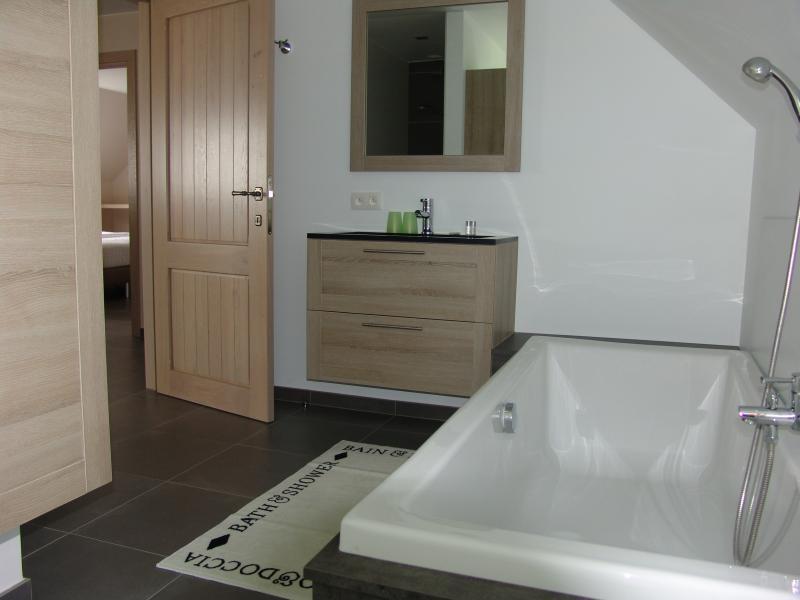salle de bain 2 Location Gite 78556 Courtrai