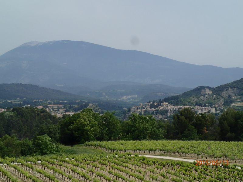 Vue depuis la location Location Gite 81749 Vaison la Romaine