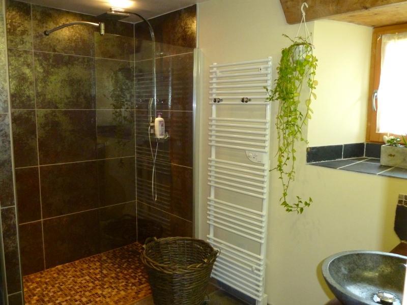 Salle d'eau Location Gite 83058 La Mongie