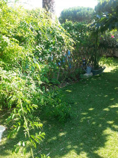 Jardin Location Studio 93396 Le Grau du Roi