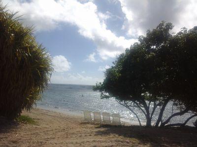 Location Appartement 101800 Sainte Anne (Guadeloupe)