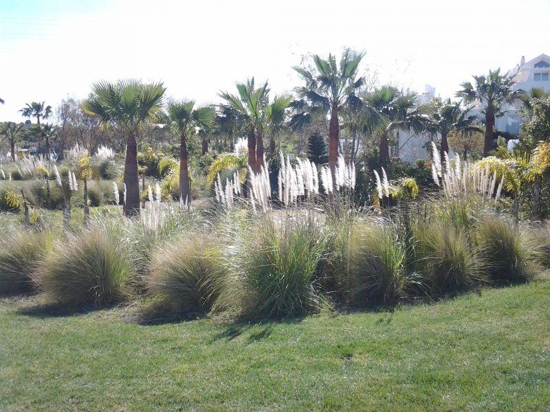 Jardin Location Appartement 108014 Estepona