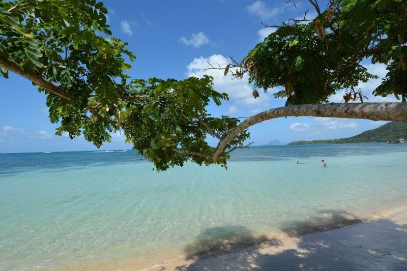 Plage Location Bungalow 110816 Sainte Anne (Martinique)