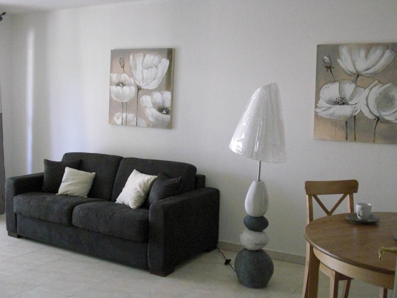 Salon Location Appartement 63966 Fréjus