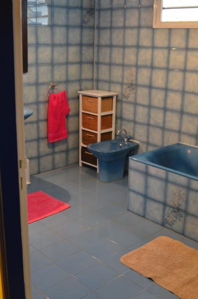 salle de bain Location Appartement 76076 Saint Pierre (Réunion)