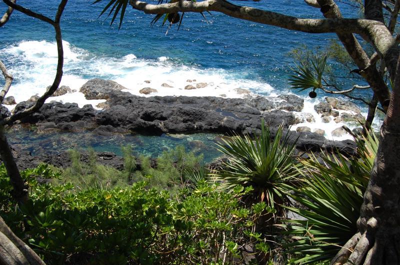 Vue autre Location Appartement 76076 Saint Pierre (Réunion)