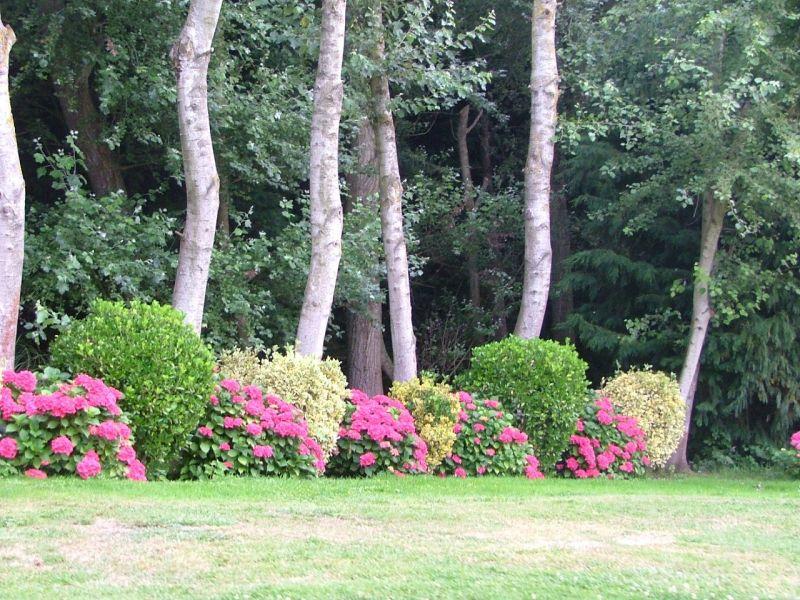 Jardin Location Gite 115484 Wissant