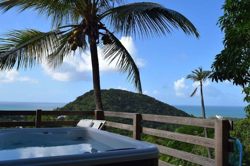 Vue de la terrasse Location Gite 73814 Deshaies