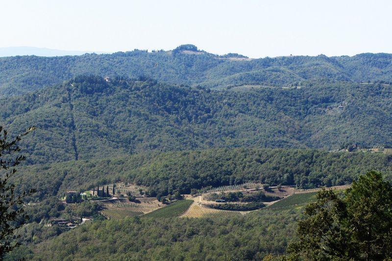 Vue depuis la location Location Villa 75874 Sienne