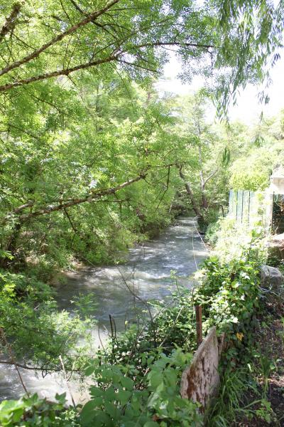 Jardin Location Maison 78845 Cotignac