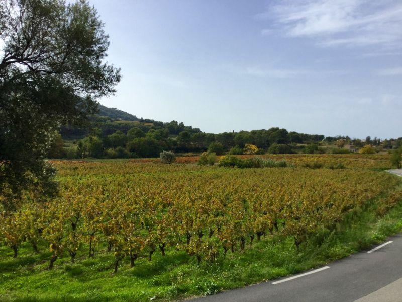 Vue extérieure de la location Location Maison 96924 La Cadière d'Azur