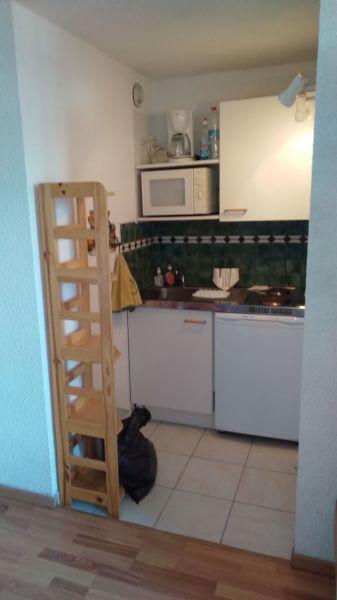 Coin cuisine Location Appartement 117670 Risoul 1850