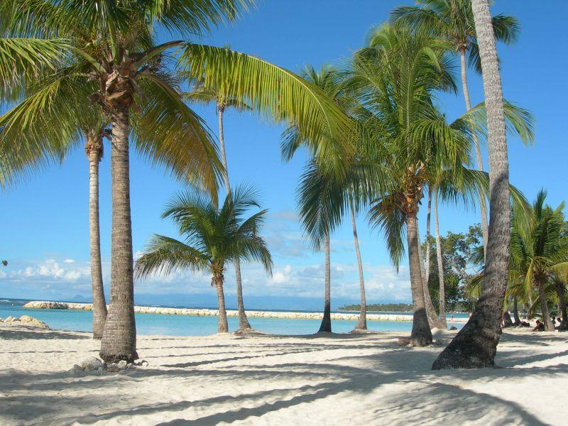 Plage Location Appartement 66397 Sainte Anne (Guadeloupe)