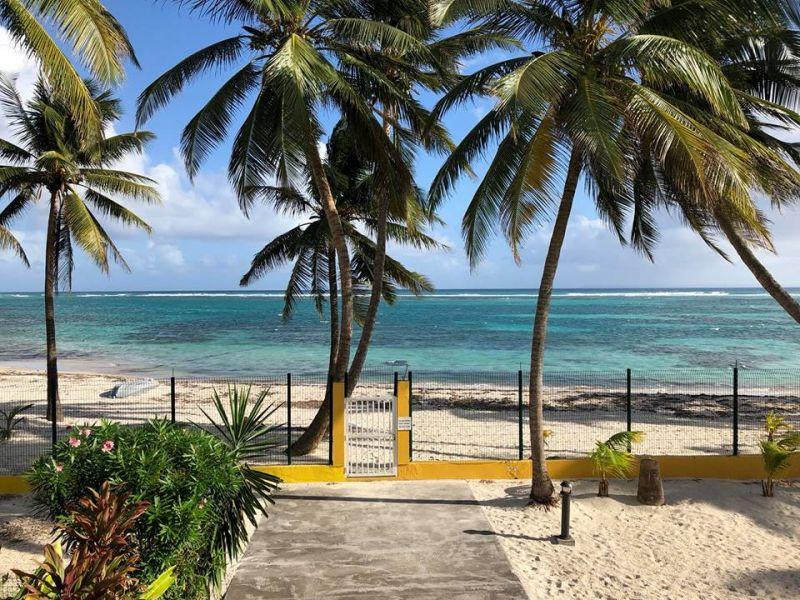 Plage Location Appartement 73124 Sainte Anne (Guadeloupe)