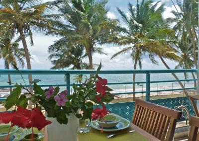 Vue de la terrasse Location Appartement 73124 Sainte Anne (Guadeloupe)