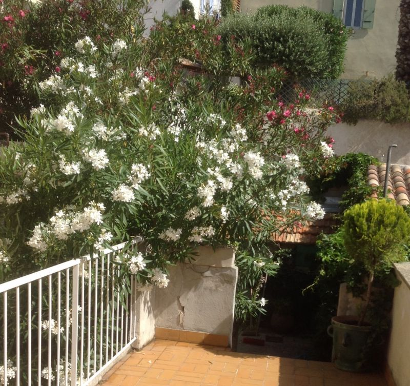 Vue de la terrasse Location Appartement 74517 Marseille