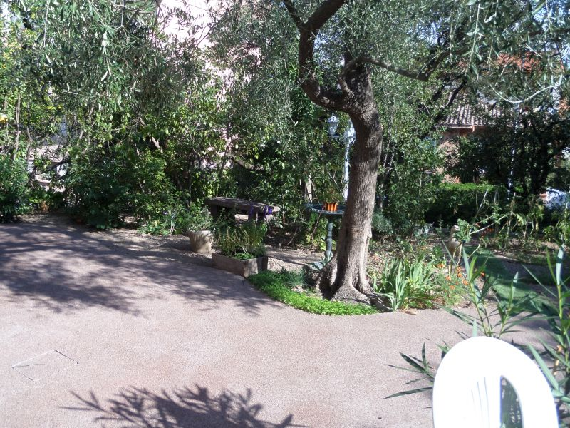 Jardin Location Appartement 91064 Saint Raphael