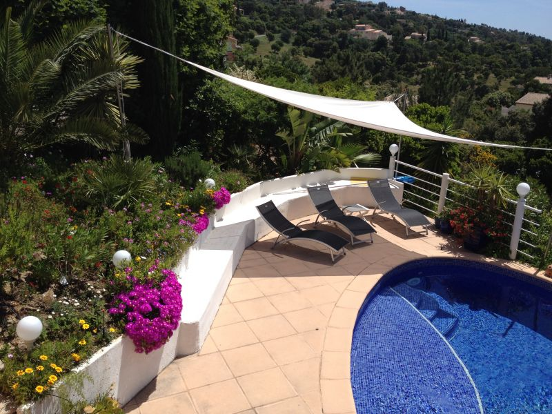 Piscine Location Villa 92759 Les Issambres
