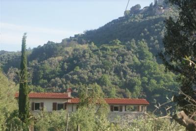 Vue à proximité Location Gite 98512 Viareggio