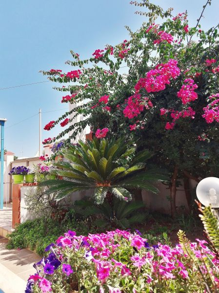 Jardin Location Villa 107993 Tre Fontane
