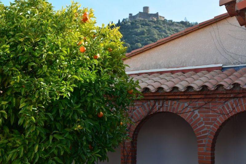 Vue depuis la location Location Maison 114513 Collioure
