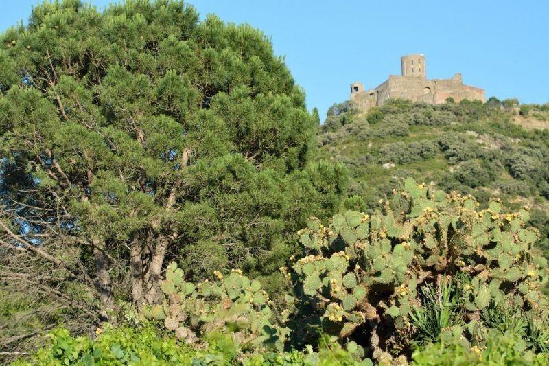 Vue extérieure de la location Location Maison 114513 Collioure