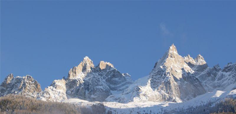Vue du balcon Location Appartement 116295 Chamonix Mont-Blanc
