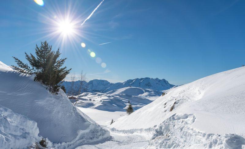 Location Chalet 100938 Alpe d'Huez
