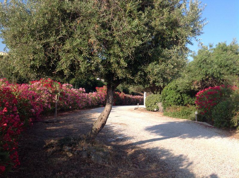 Vue autre Location Villa 107673 Calvi