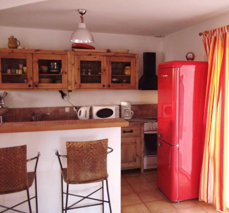 Cuisine américaine Location Villa 90171 Le Grau du Roi