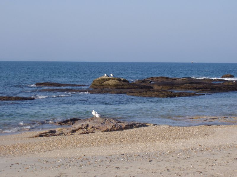 Plage Location Maison 111327 Quiberon